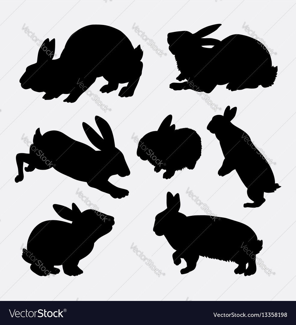 Rabbit animal action silhouette