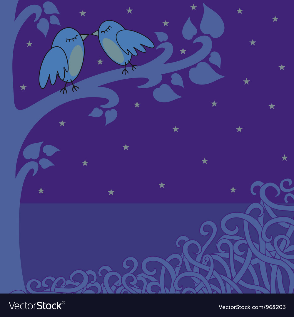 Birds in night