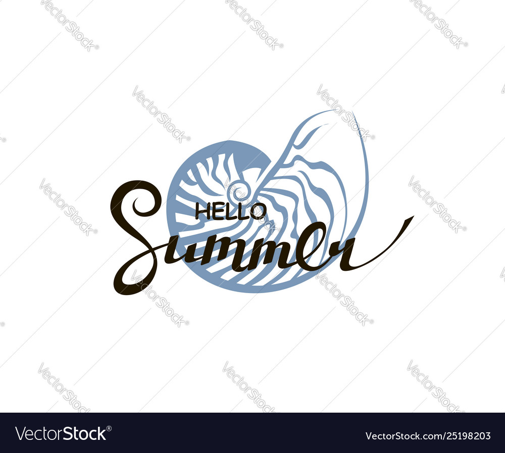 Hello summer lettering with seashell