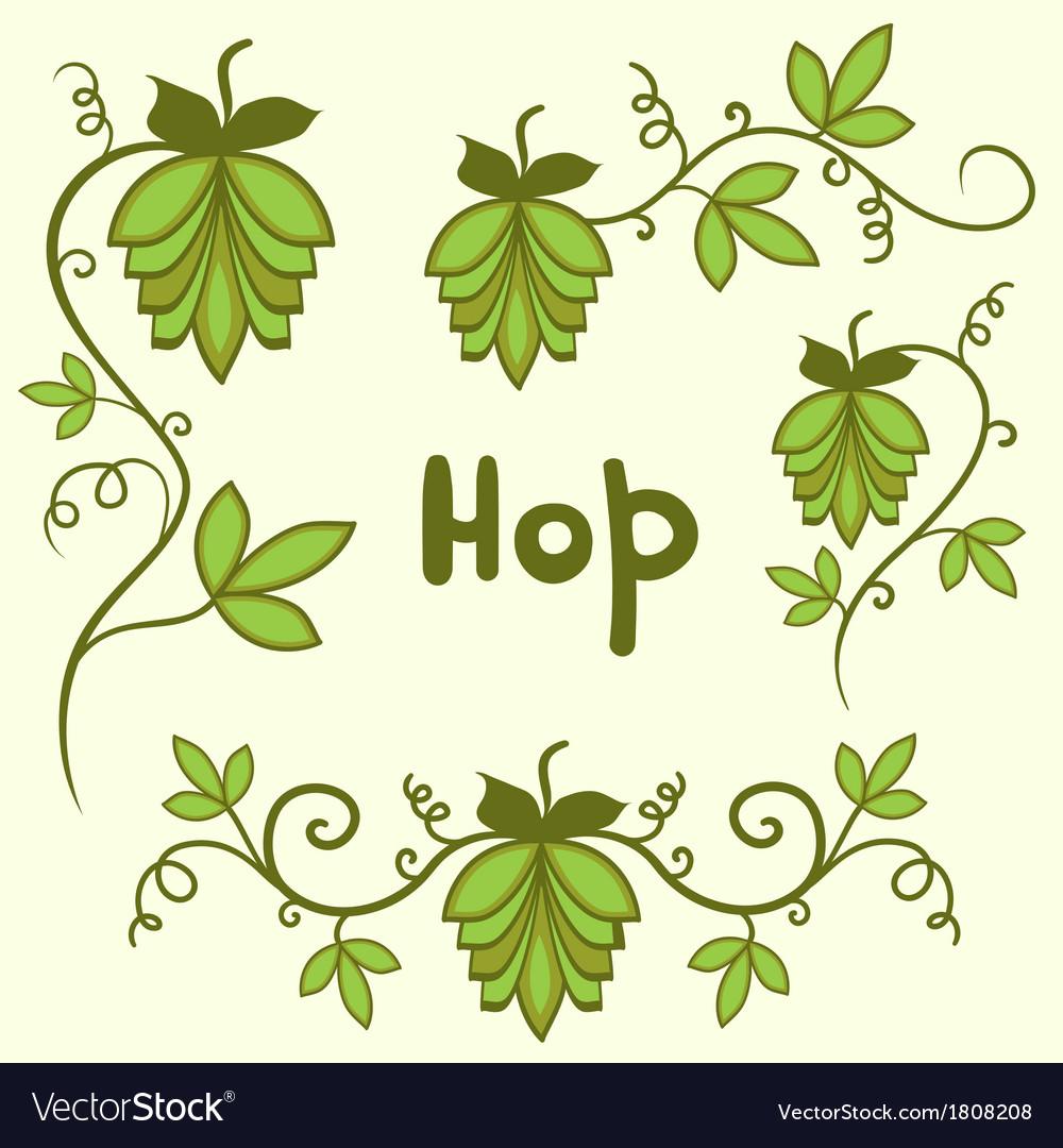 Stylized hops set vector image