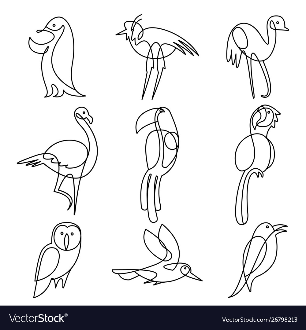 Birds continuous line drawing elements set