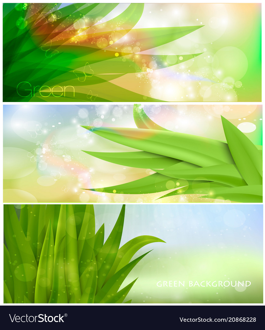 Grass nature banner for facebook design
