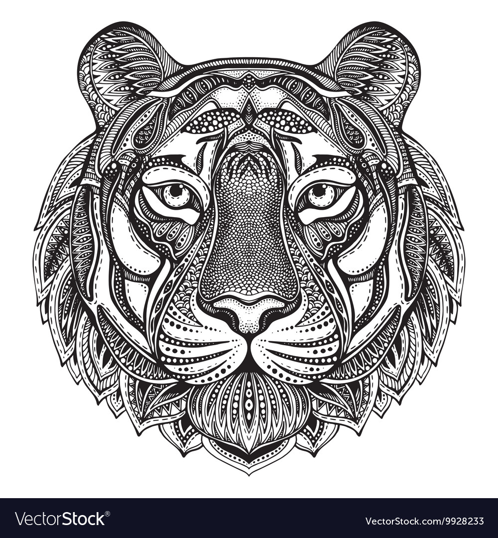 df2930955d344 Hand drawn graphic ornate tiger Royalty Free Vector Image