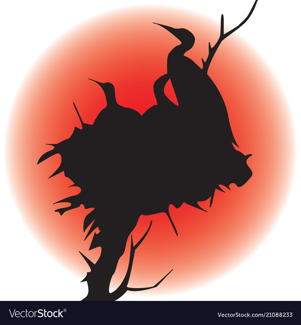 Image of a silhouette of birds in a nest