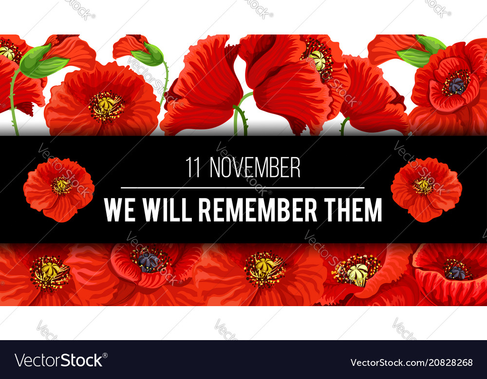 remembrance day poppy banner vector image