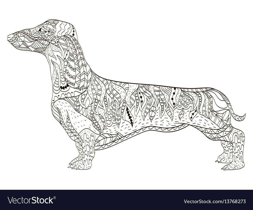 Dachshund Coloring Book For Adults Royalty Free Vector Image