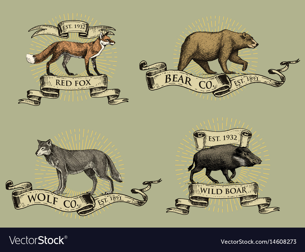 Red fox boar bear and grey wolf logos emblems or