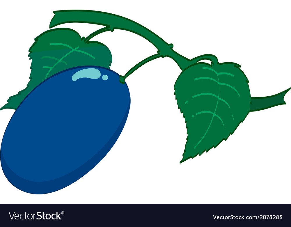 Vegea2 vector image