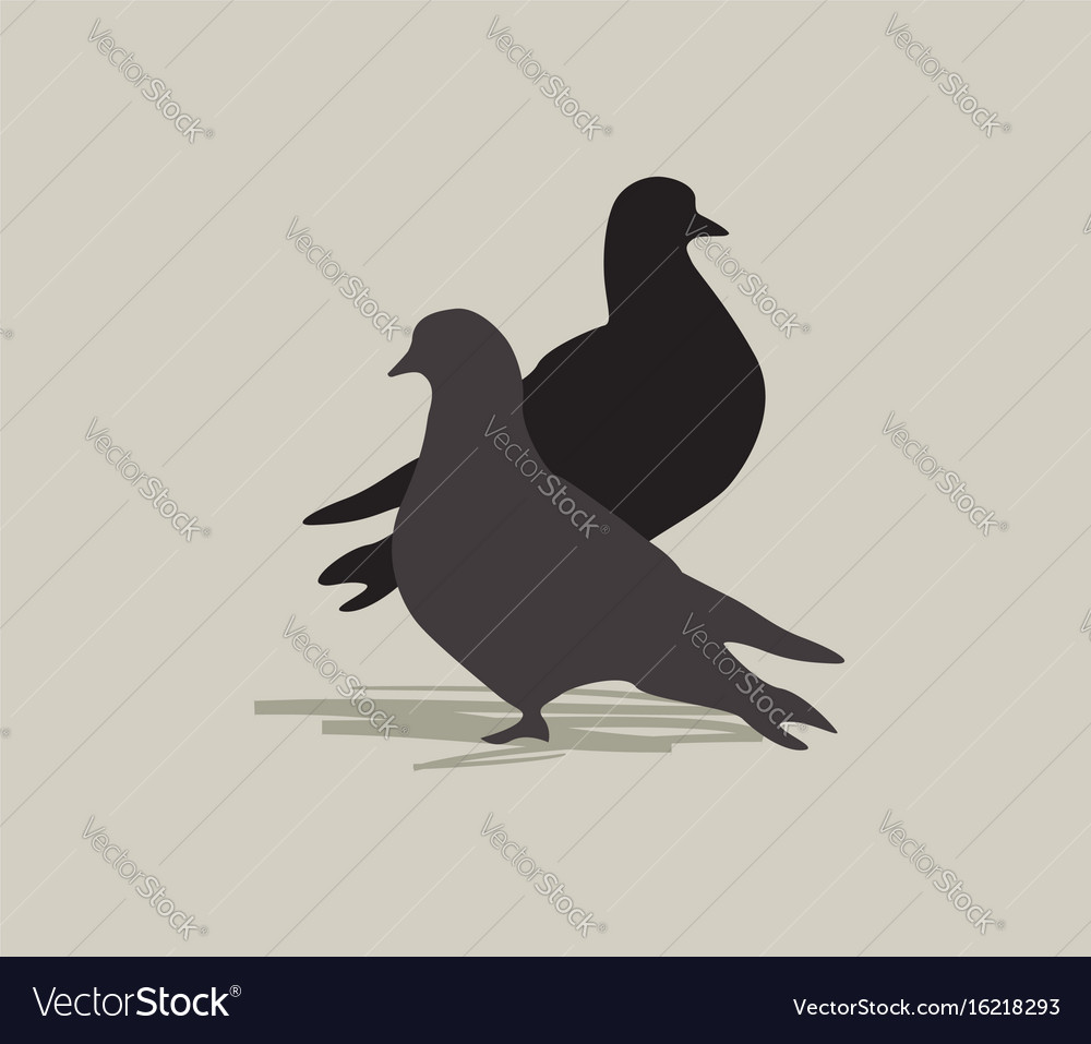 Two birds dove silhouette love in peace forgive vector image