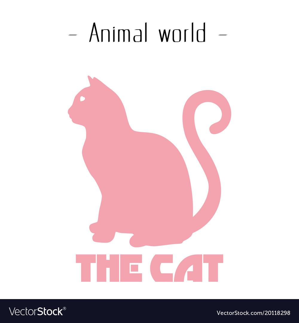 Animal world the cat pink cat background im