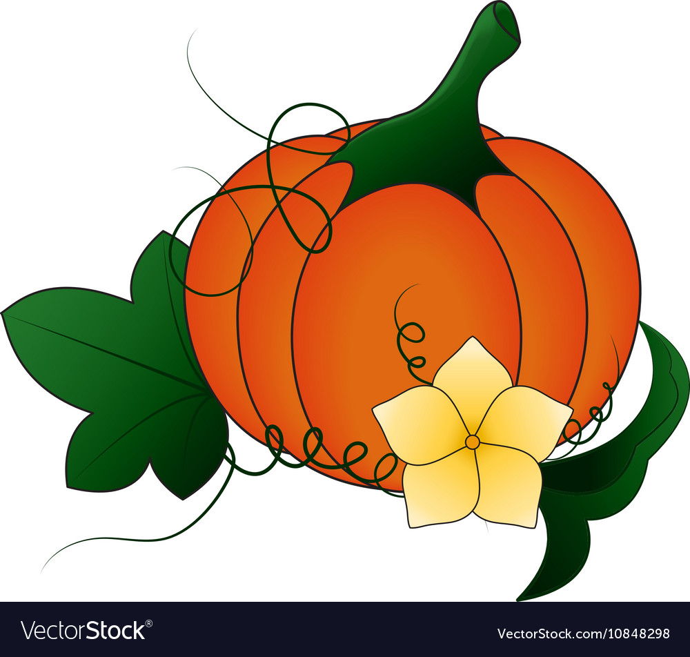 Autumn pumpkin and leaves cartoon royalty free vector image autumn pumpkin and leaves cartoon vector image altavistaventures Choice Image