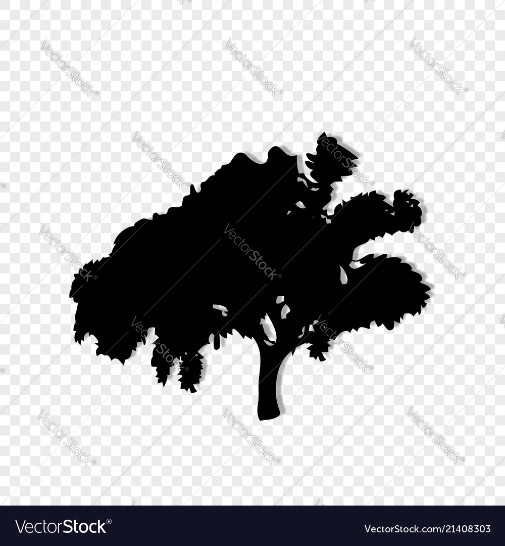Black silhouette of leafed tree isolated on