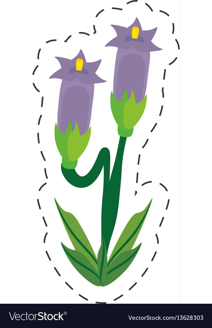 Cartoon crocus flower image