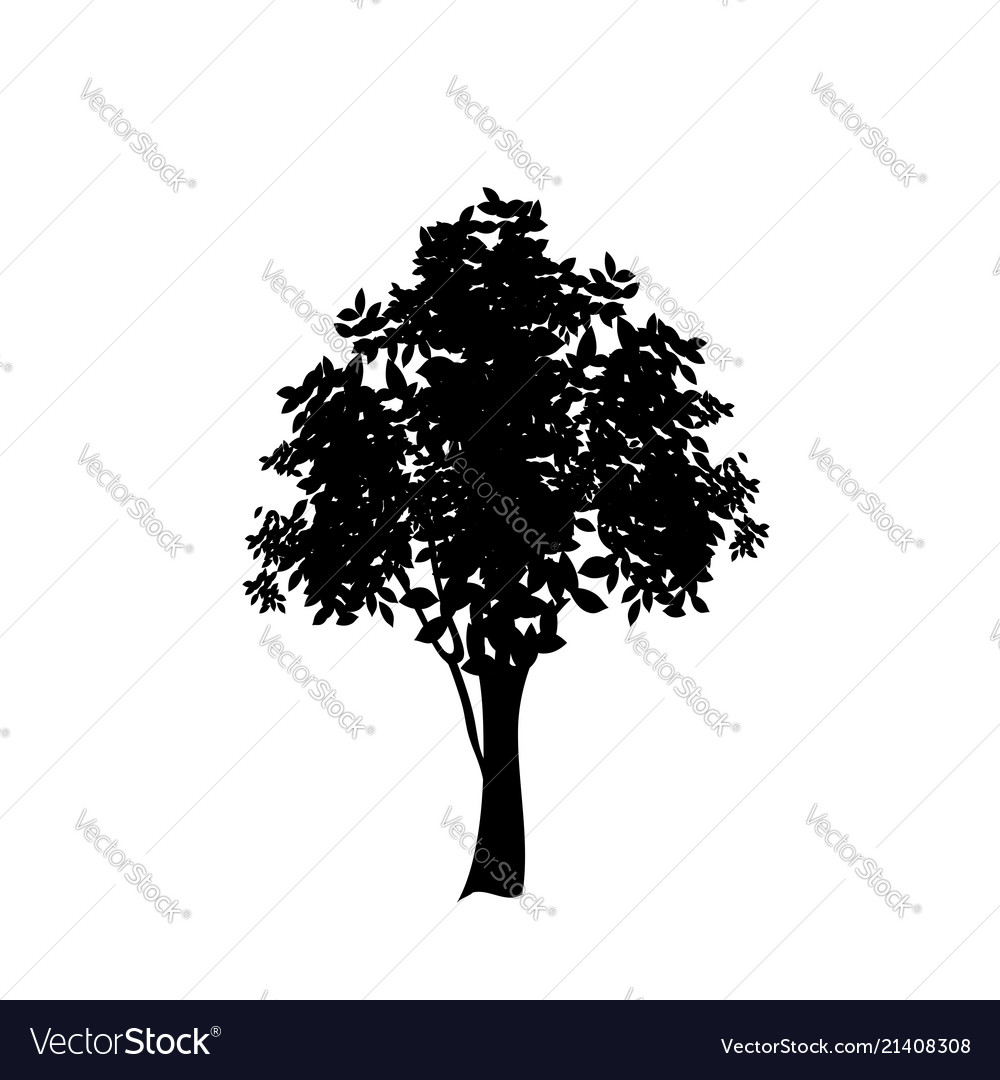 Black silhouette of deciduous tree icon isolated