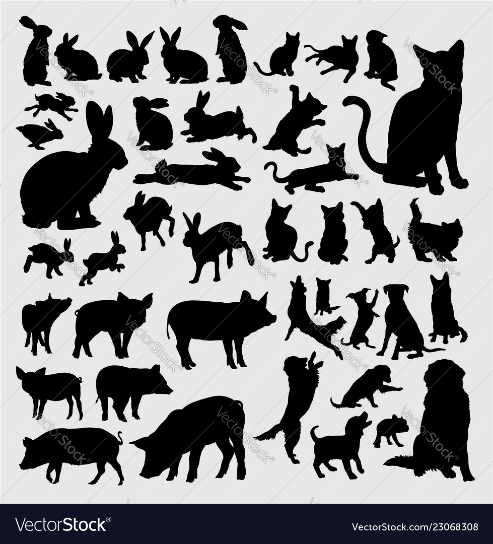 Rabbit dog pig and cat action silhouettes