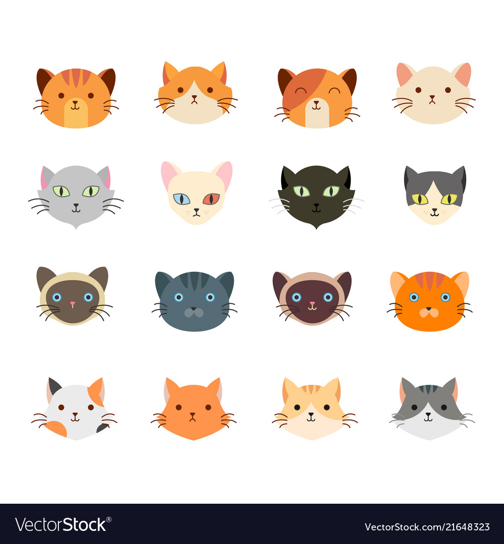 Collection cute cat head with many face