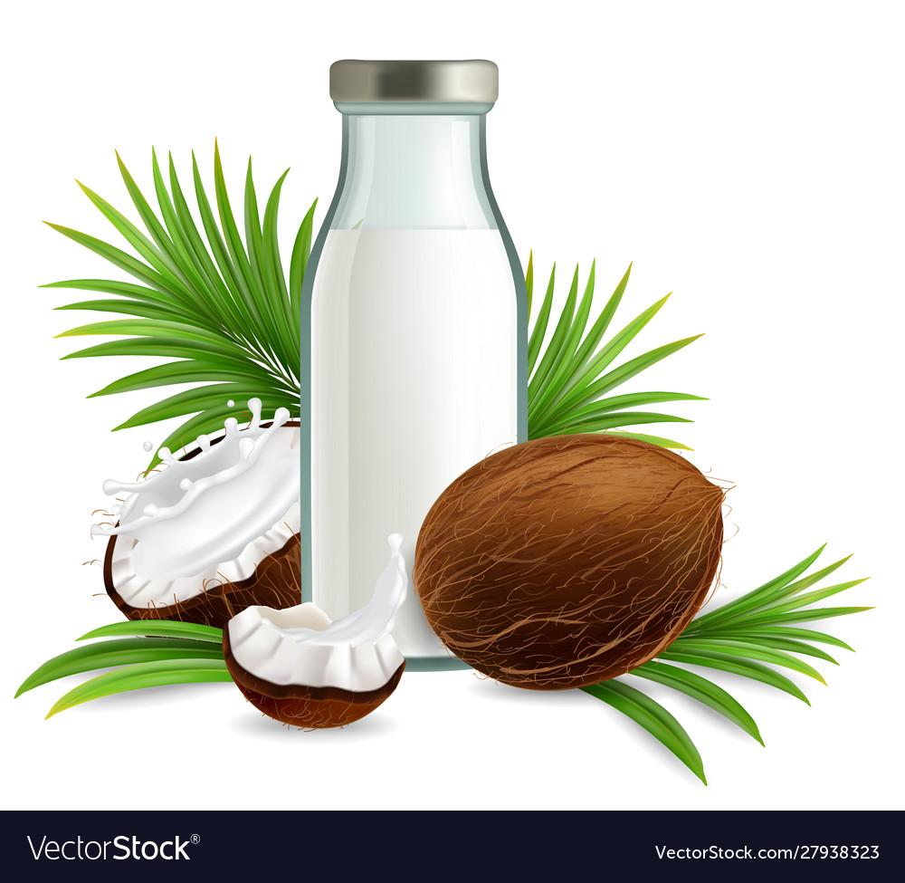 Organic non dairy coconut milk realistic