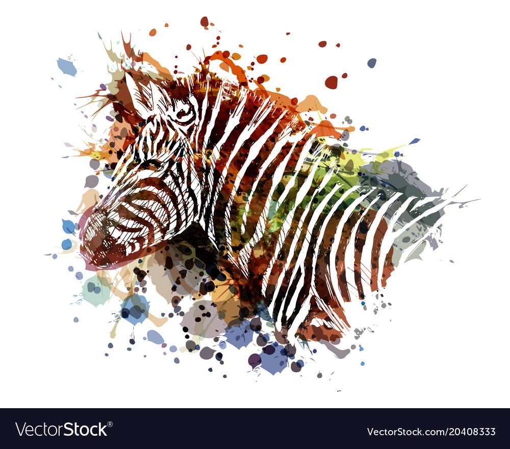 Color of zebra