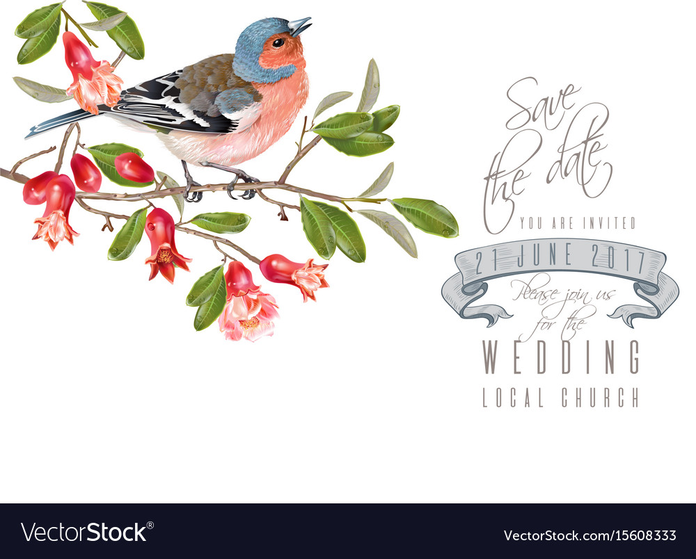 Finch pomegranate branch card Royalty Free Vector Image