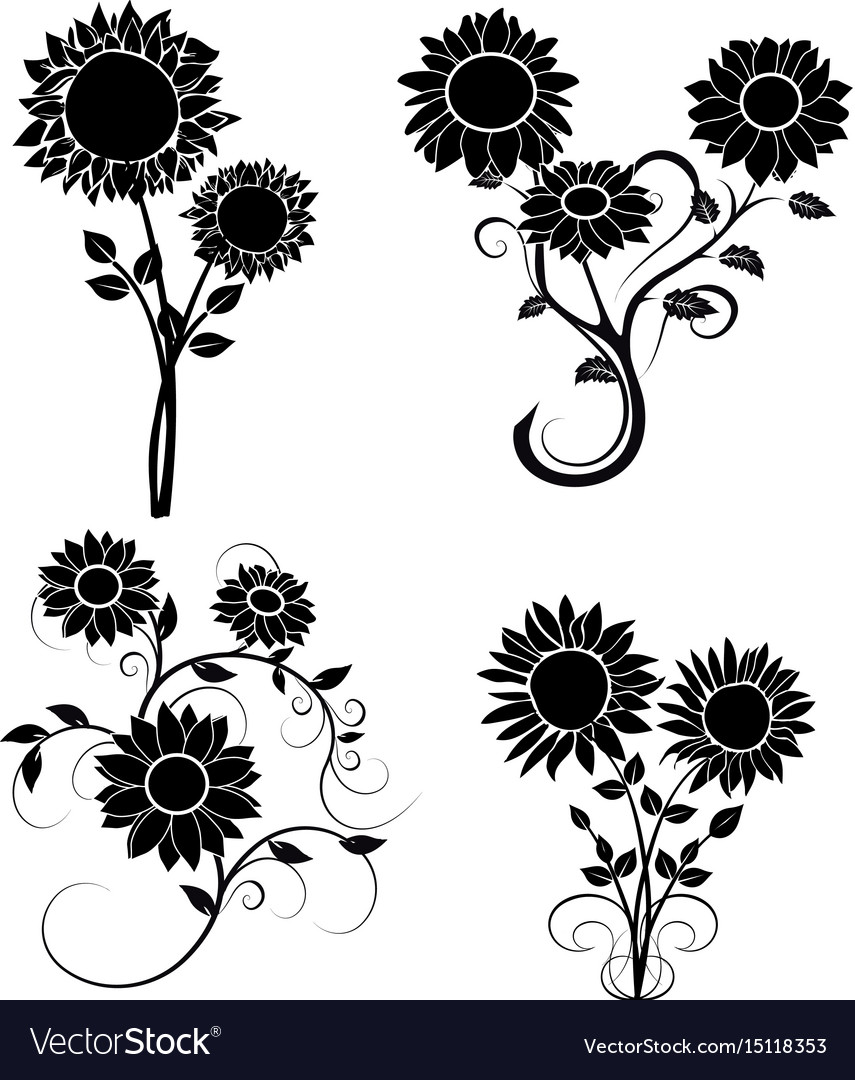 Set of sunflowers silhouette 2 Royalty Free Vector Image