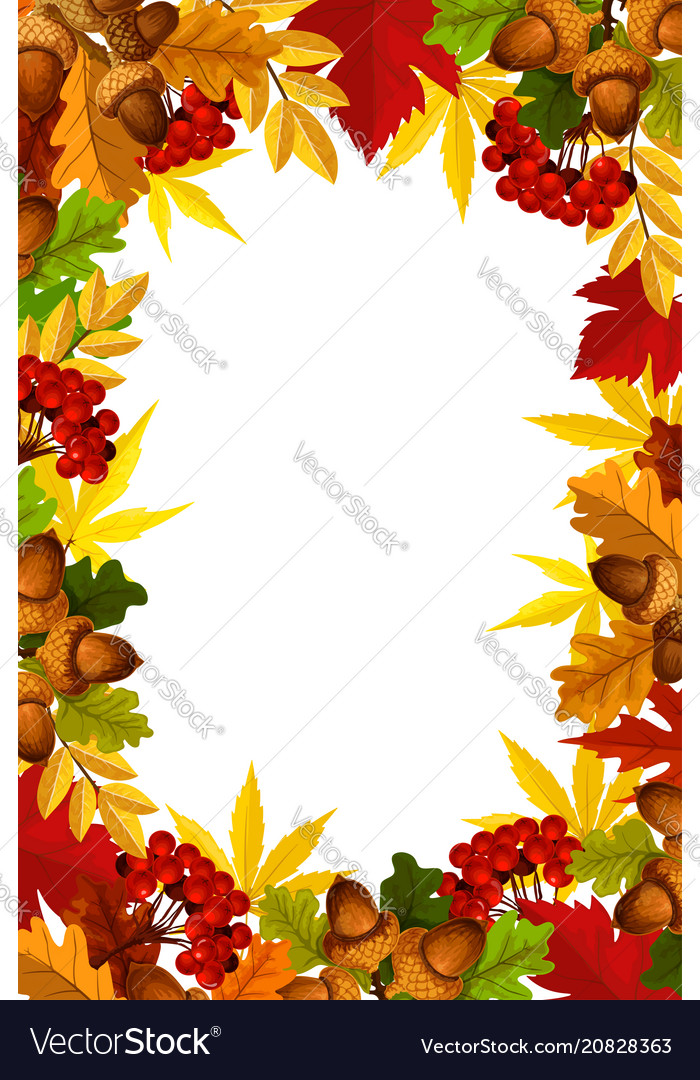 Autumn frame of fall season leaf acorn and berry