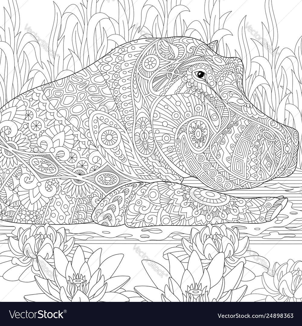 Hippopotamus hippo adult coloring page