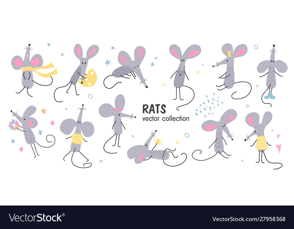 A set hand-drawn funny rats in different poses