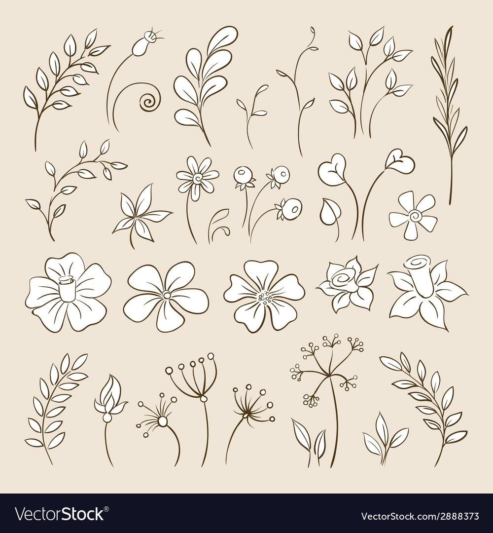 Doodle elements for design Flowers buds leaves