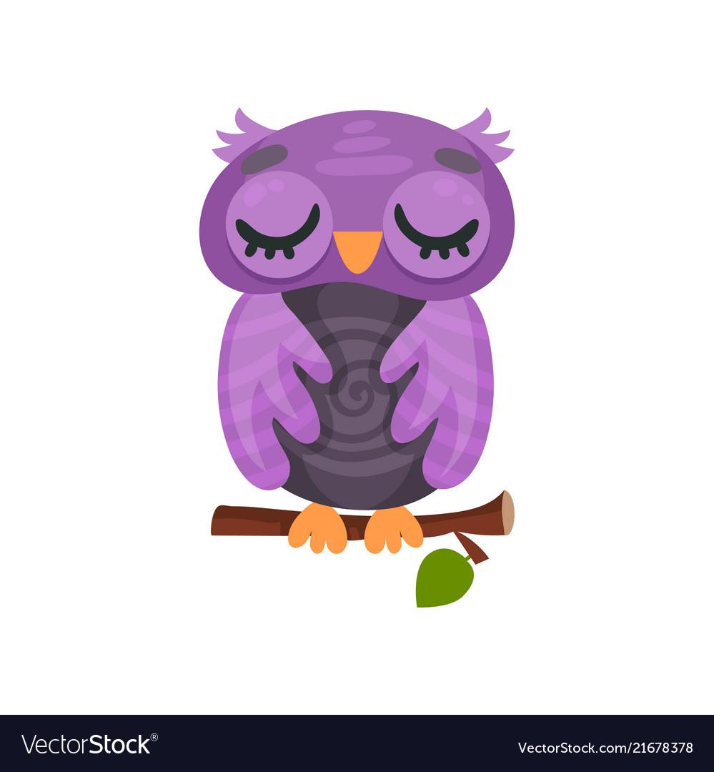 cute purple owlet sleeping on a branch sweet owl vector image