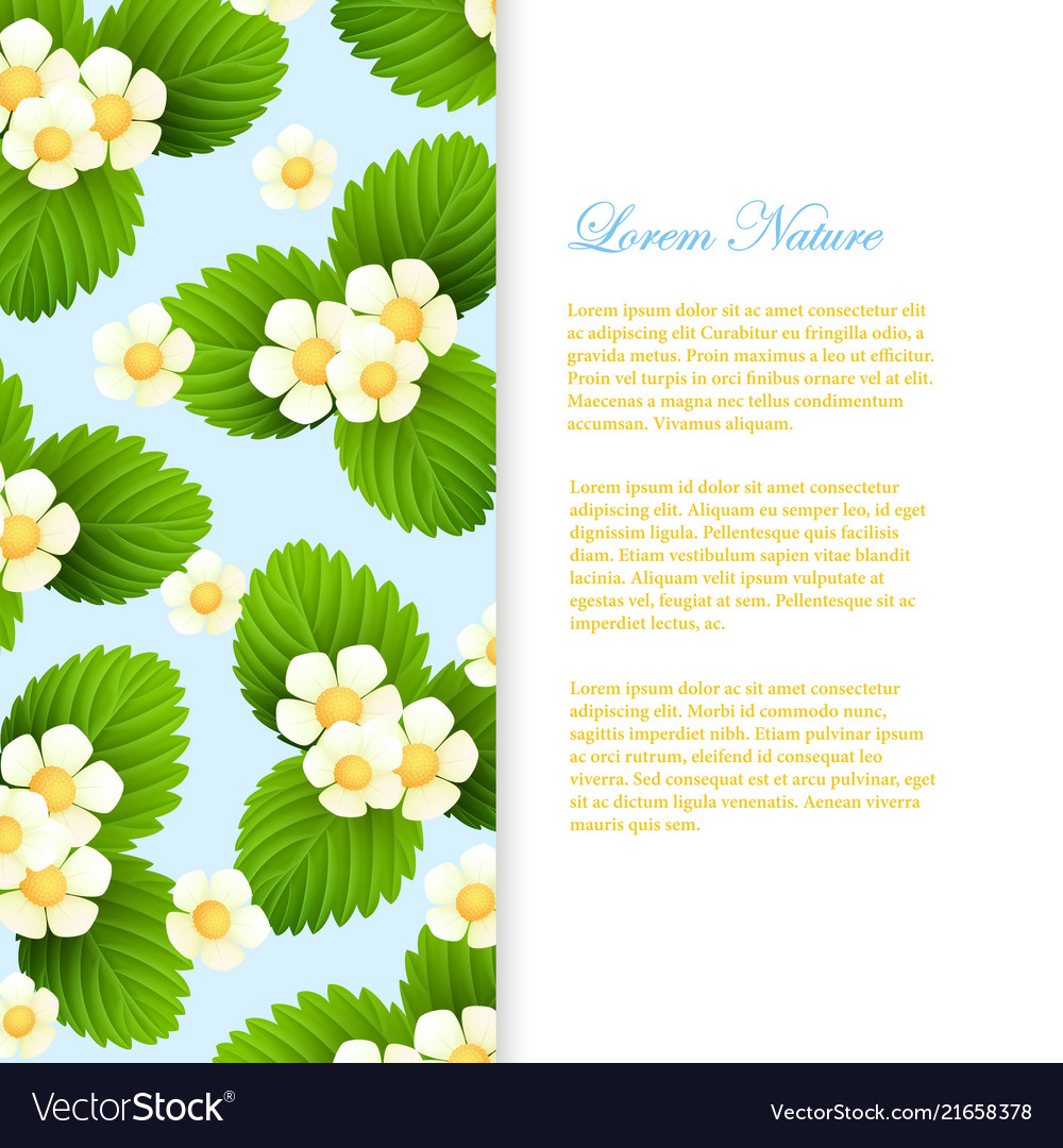 Nature banner template with realistic leaves and