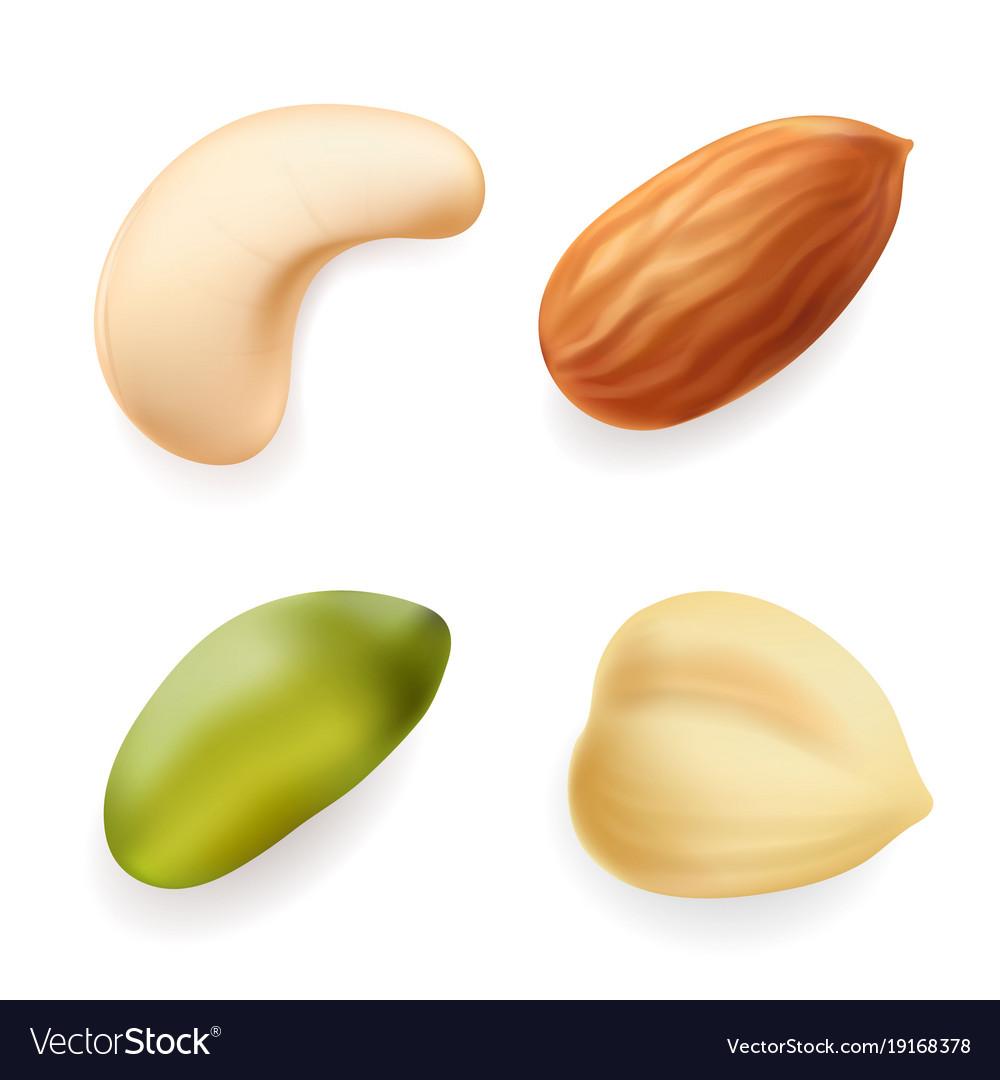 Nuts set hazelnut pistachio almond cashew