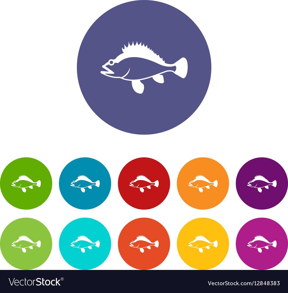 Rose fish Sebastes norvegicus set icons vector image