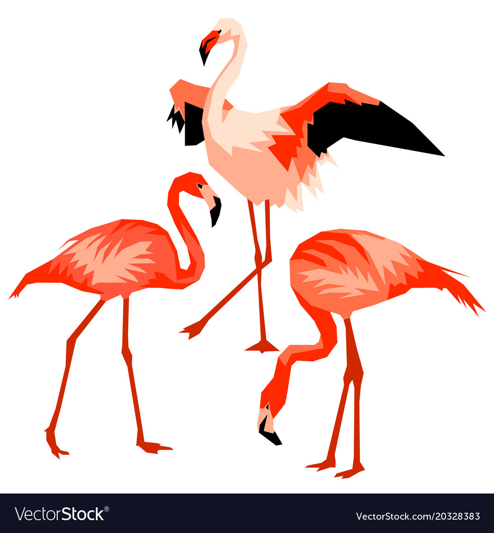 Set of flamingo tropical bright abstract birds