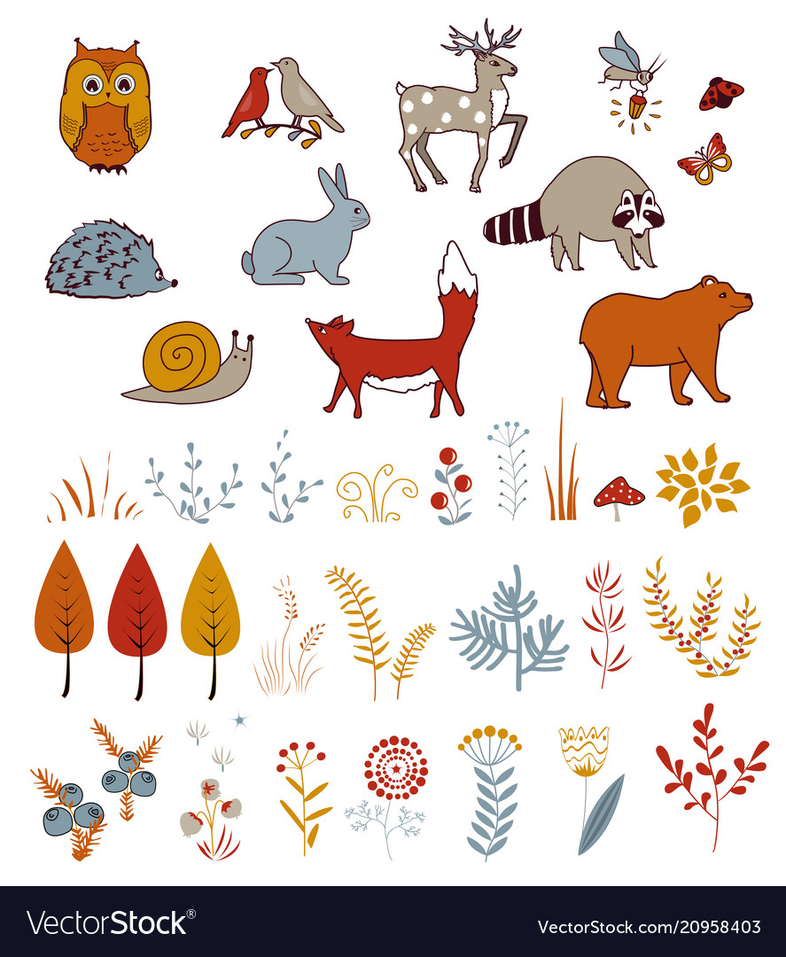 Cute set with doodle forest plants and animals vector image