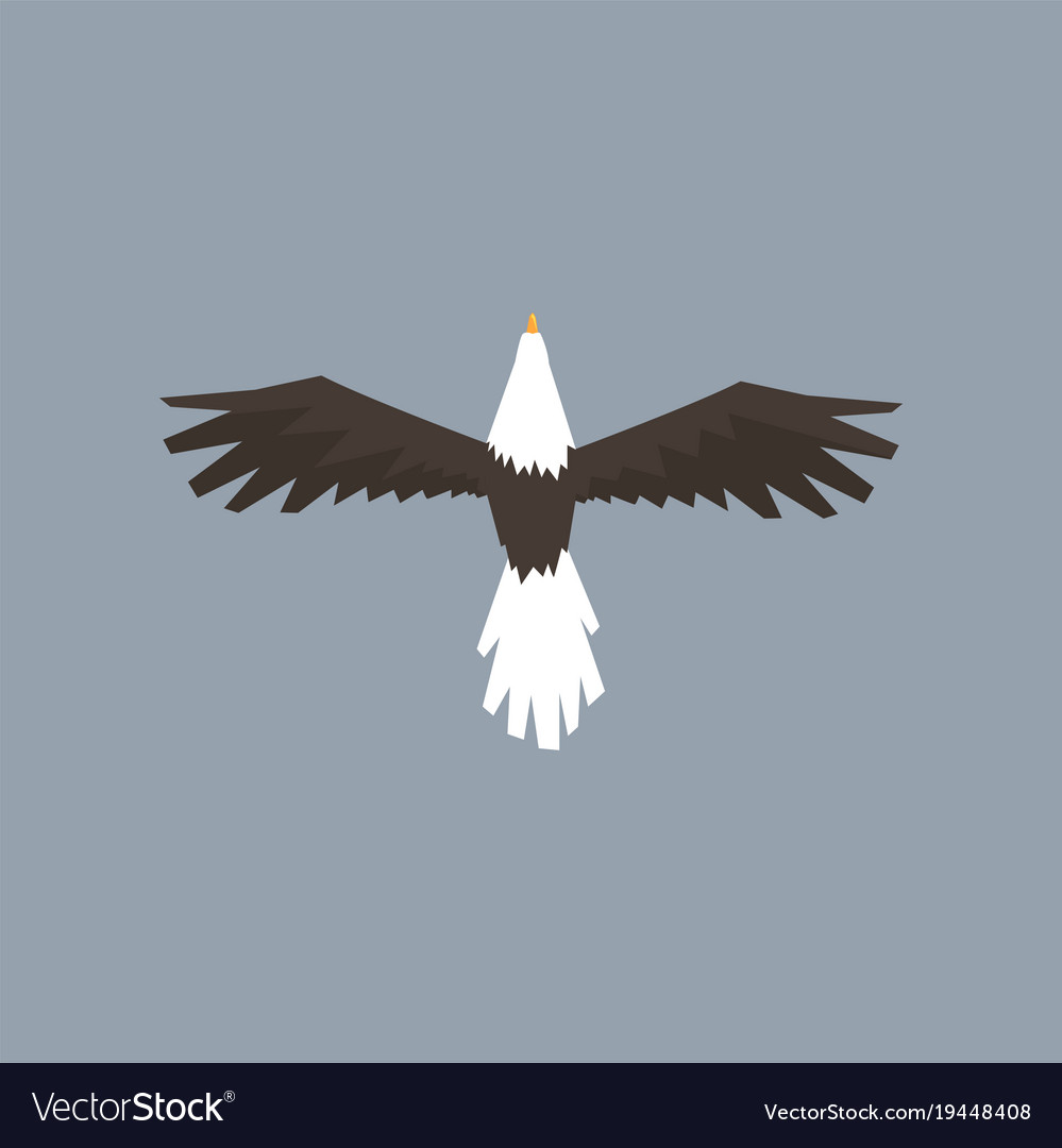 North American Bald Eagle Character Flying Symbol Vector Image
