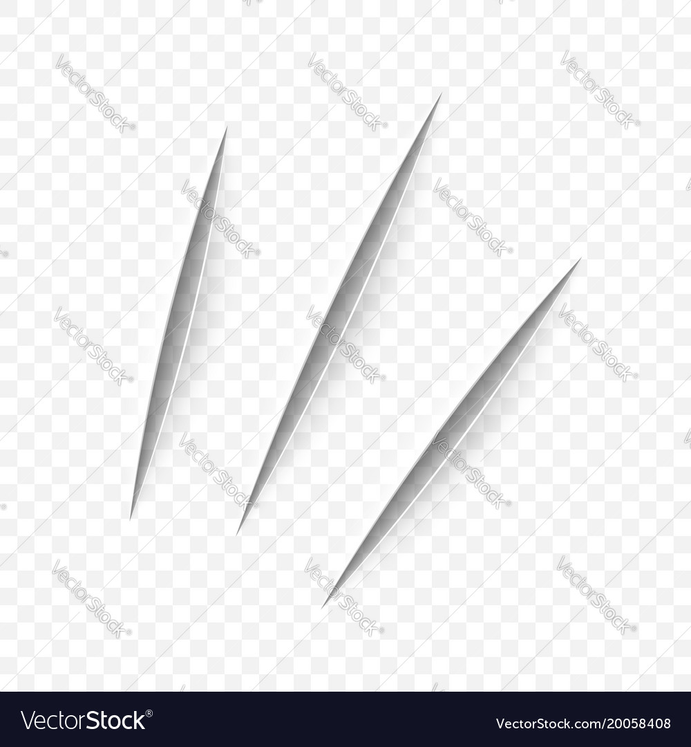 Realistic cut with a office knife vector image