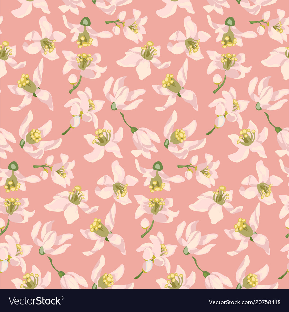 Seamless pattern with citrus tree flowers of vector image
