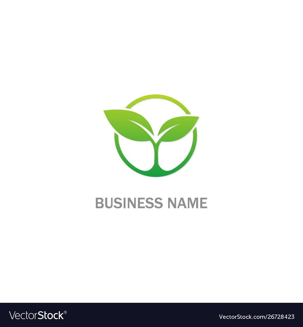 Seed green leaf plant organic logo