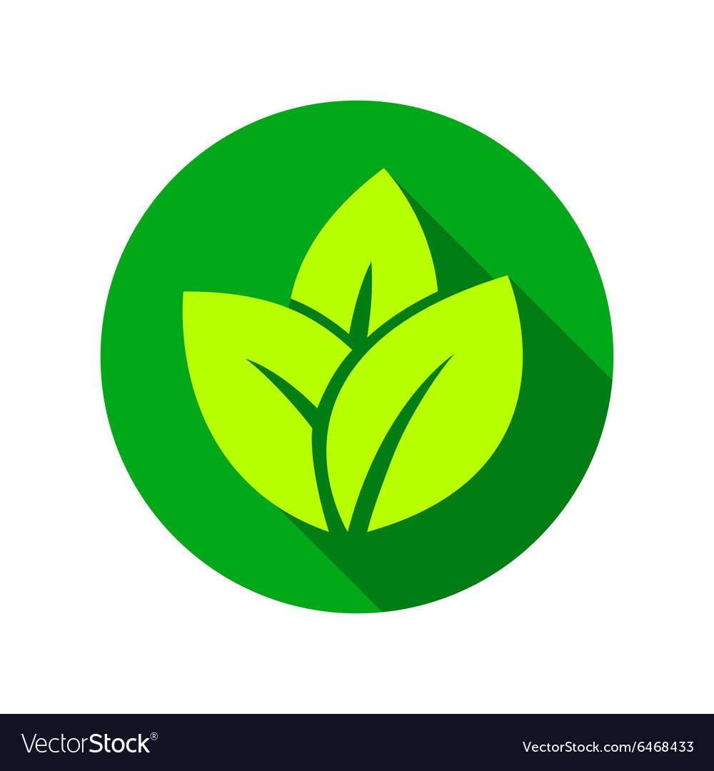 Flat leaves icons vector image