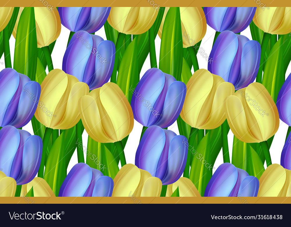 Seamless pattern made yellow and blue tulips