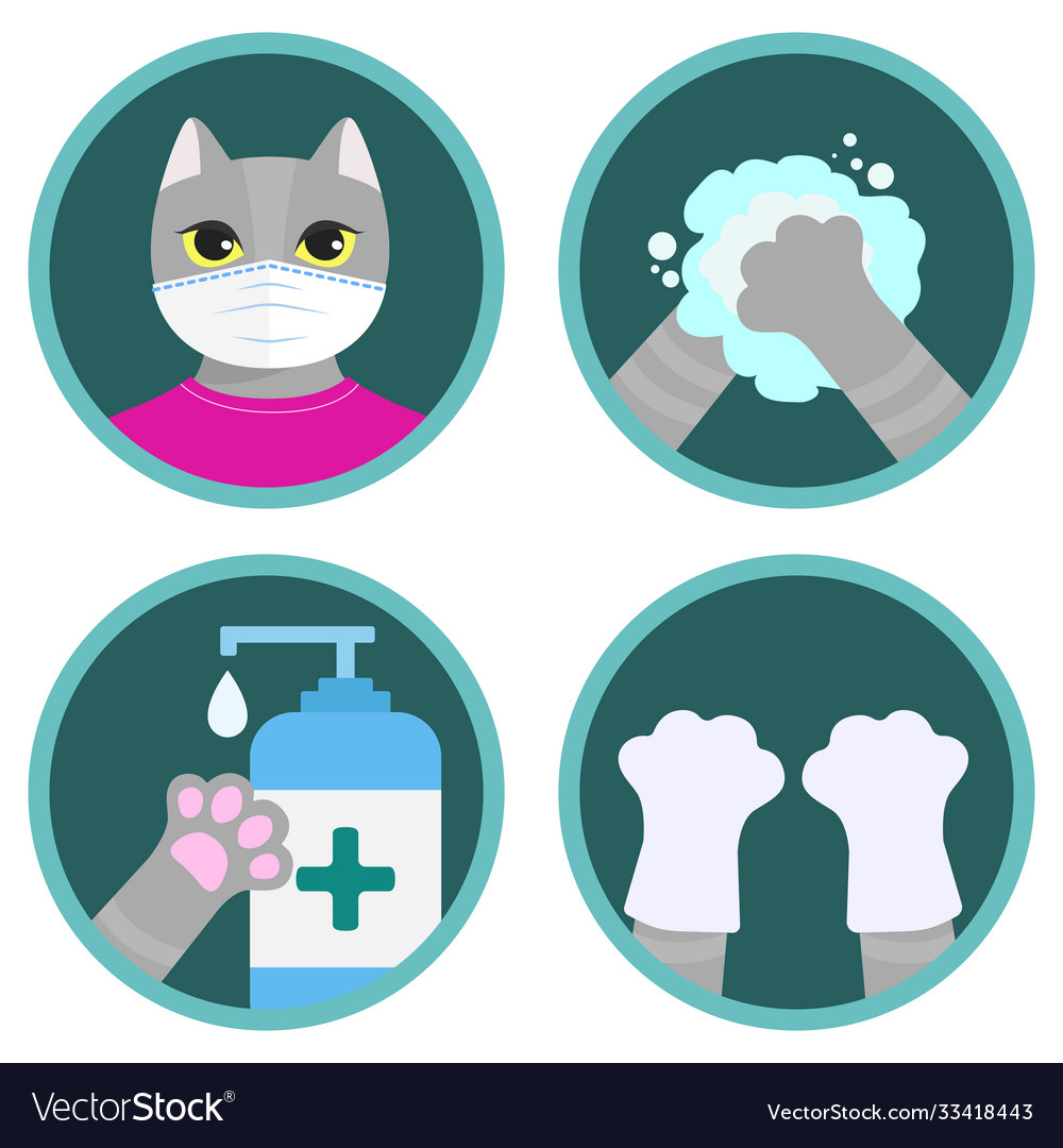 Covid19-19 safety measures - cute cat instruction