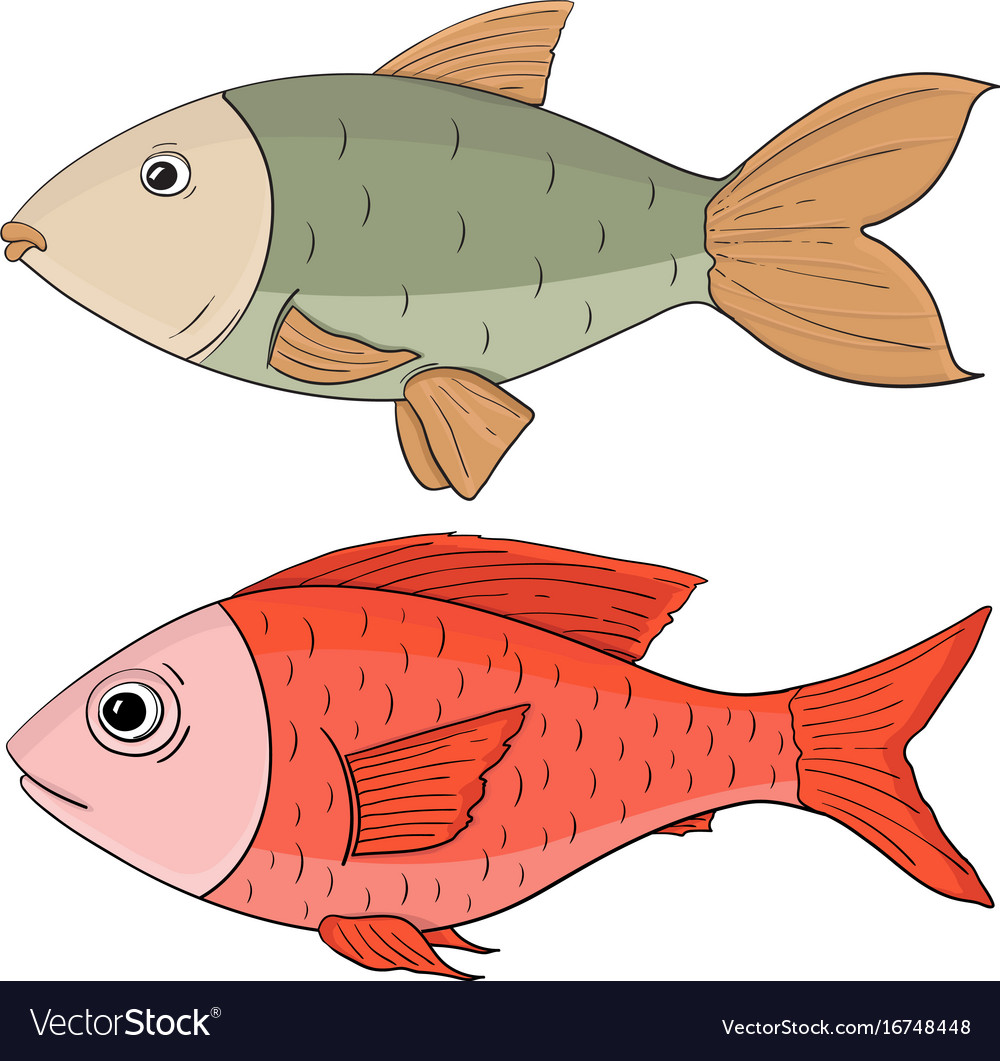 Fish colored hand drawing Royalty Free Vector Image