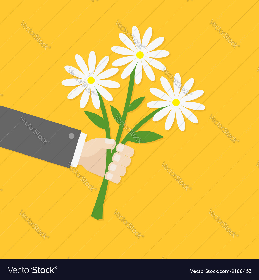 Businessman hand holding bunch bouquet of white