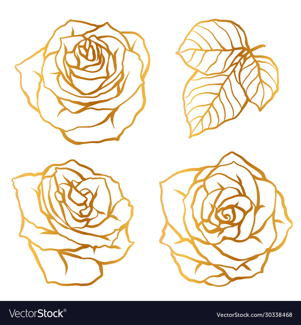 Set decorative outline roses beautiful flowers