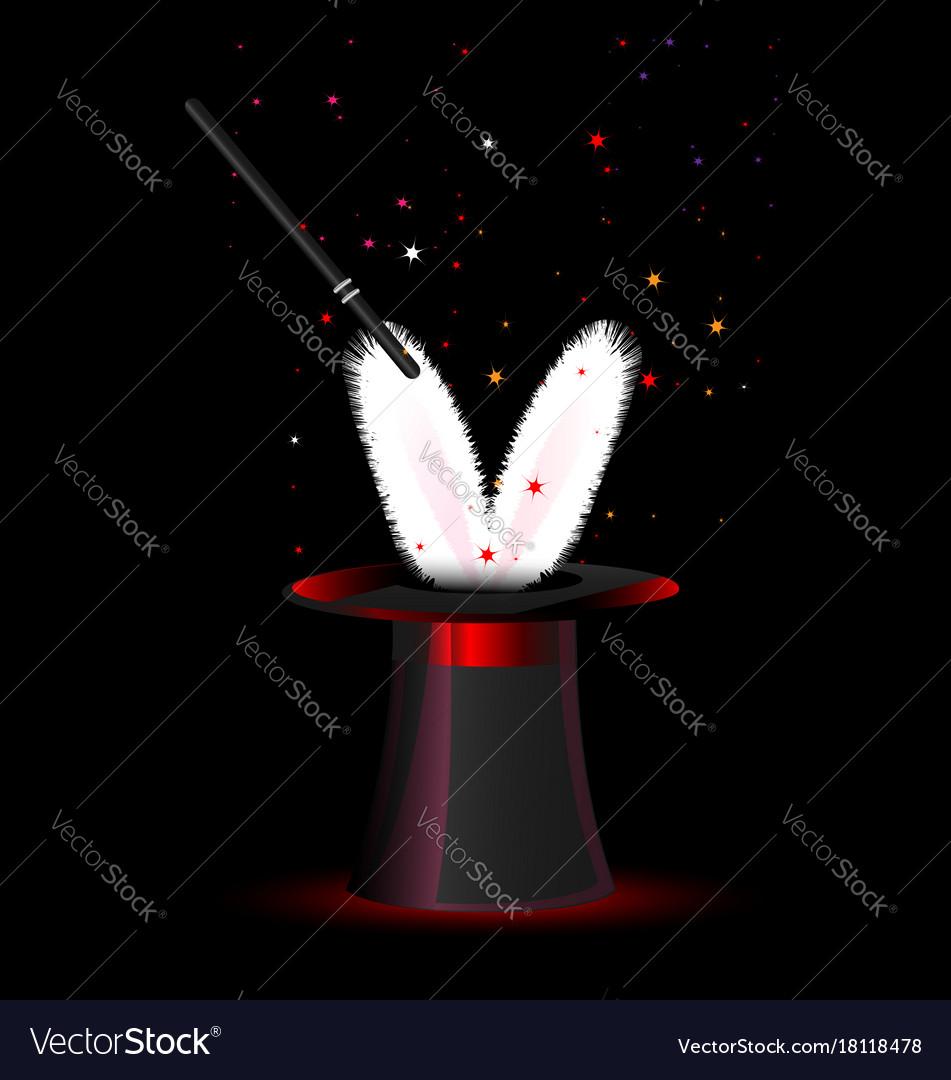 Dark magic hat and rabbit vector image
