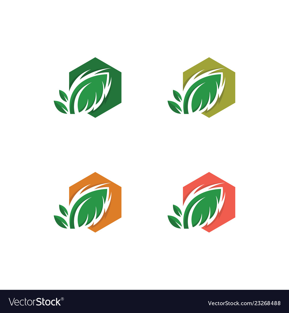 Tree leaf icon design template