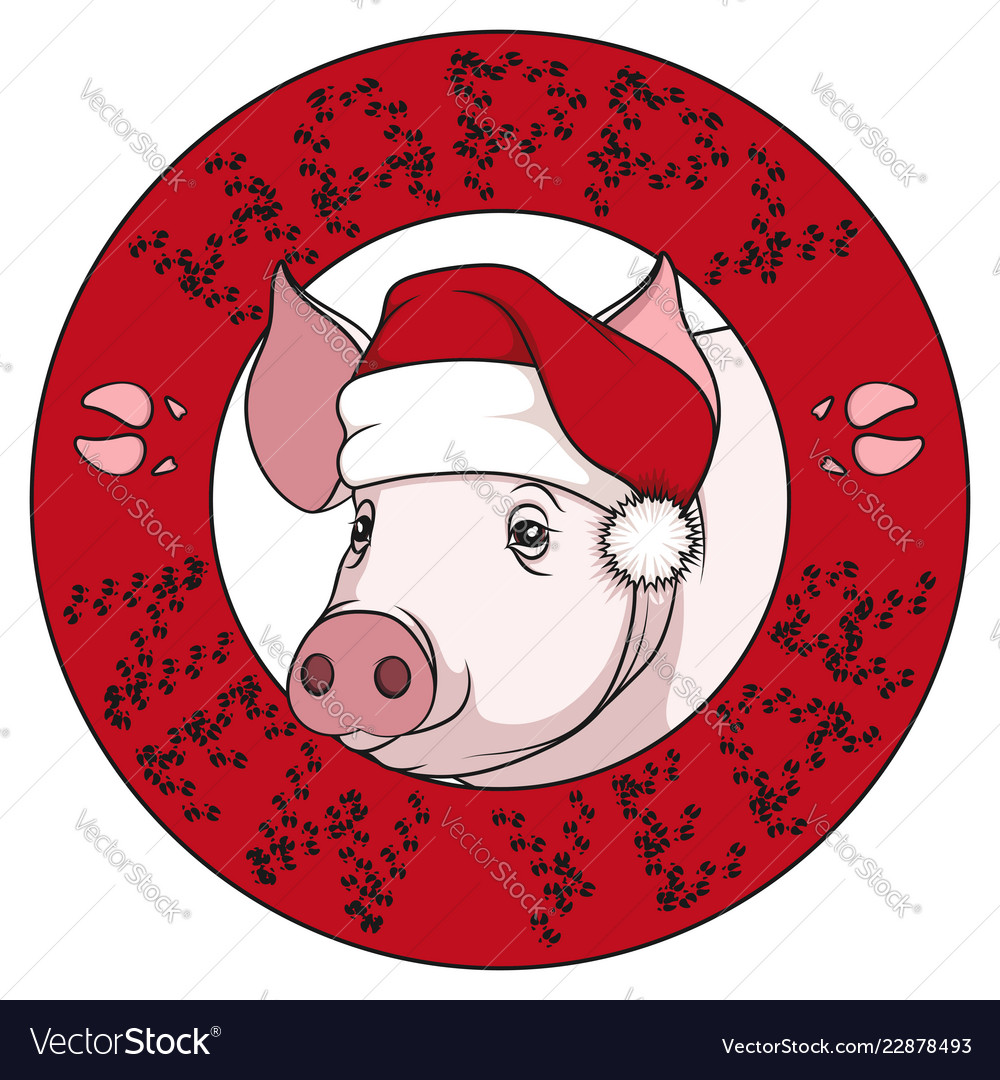 Color drawing of a pig in a christmas cap