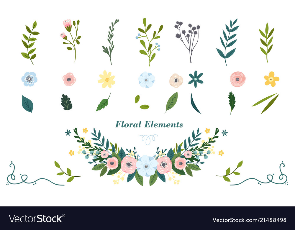 Colorful hand drawn floral elements