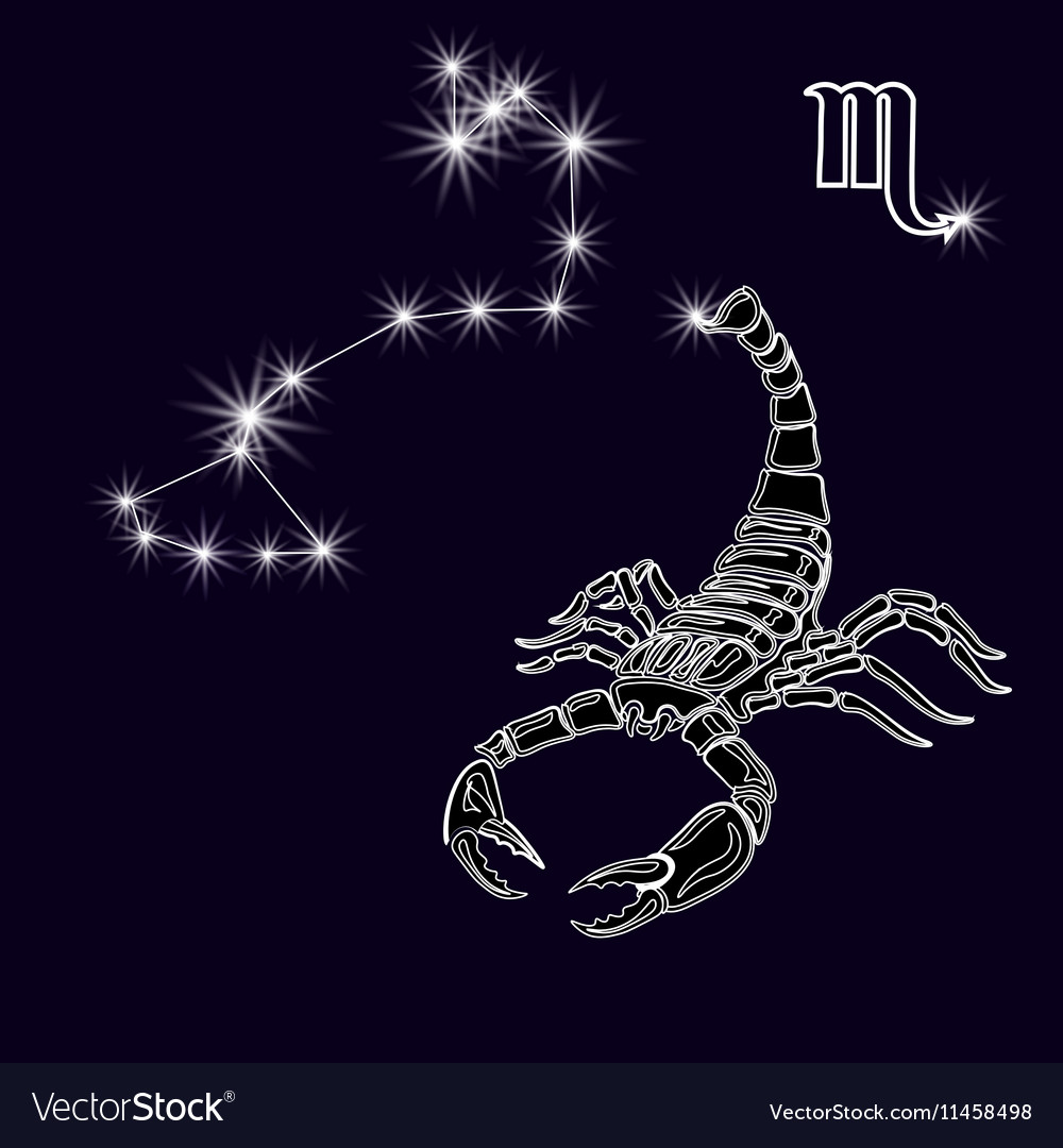 The constellation Scorpius White scorpion zodiac