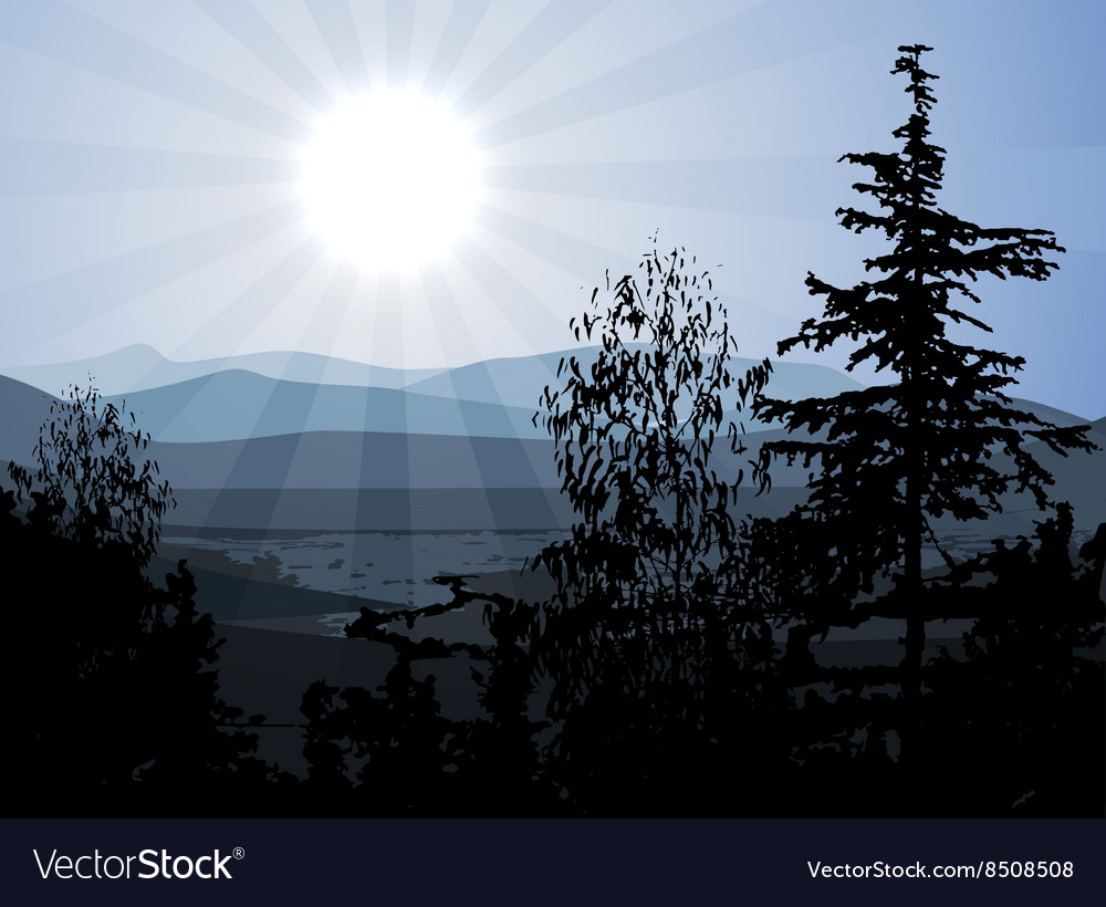 Scenic of Mountains and Valleys vector image